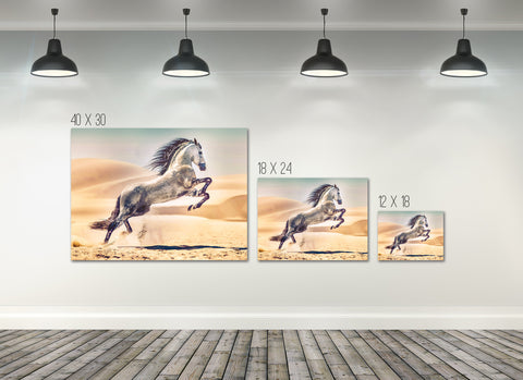 Home Decor Wall Art: Stunning Free Ridding Horse Canvas (Wood Frame Ready To Hang)