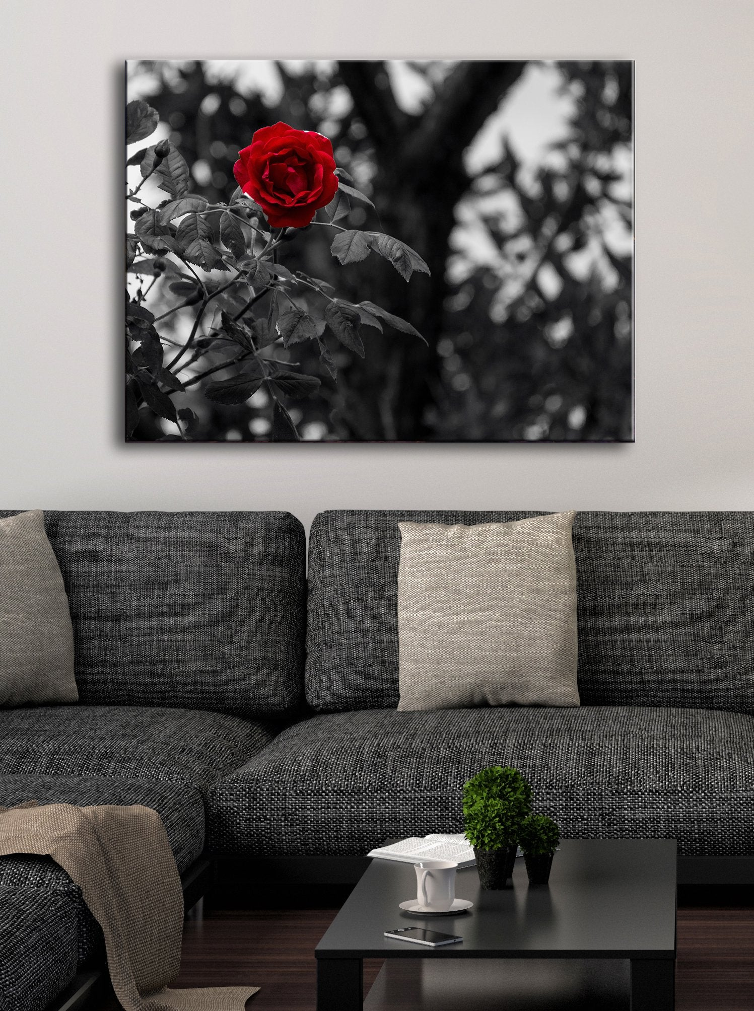 Black & White Wall Art :  Black/White Red Rose (Wood Frame Ready To Hang)