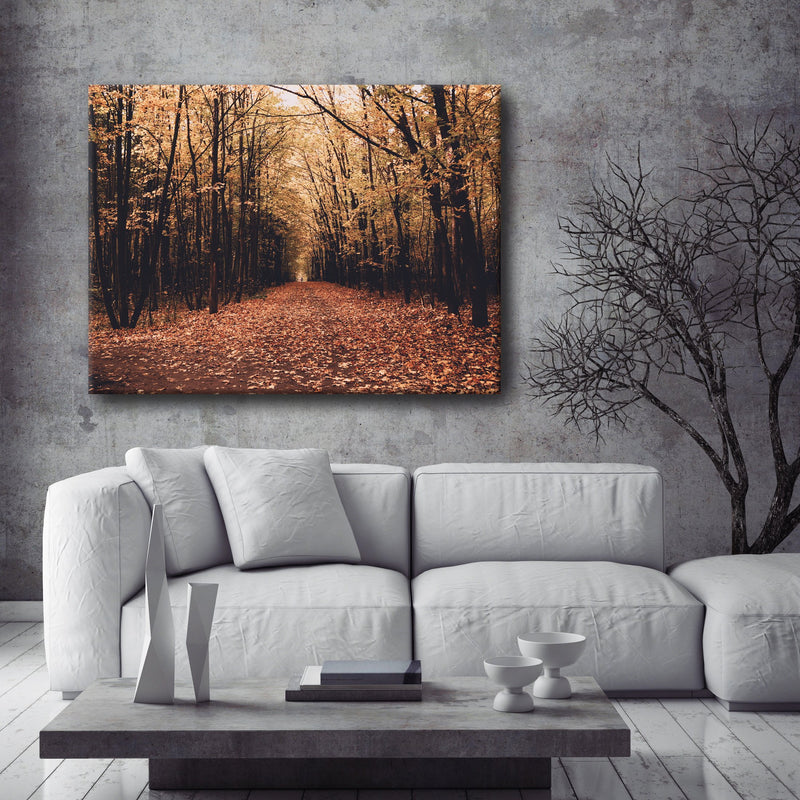 Road Wall Art:  Fall Forest 1 (Wood Frame Ready To Hang)