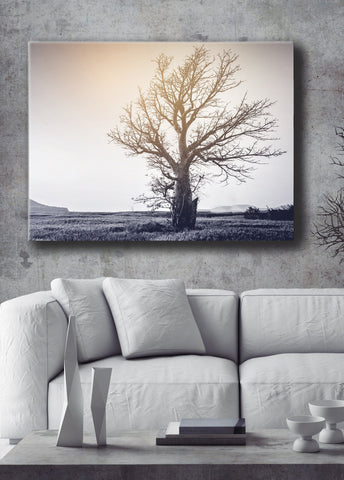 Nature Wall Art: Single Big Tree (Wood Frame Ready To Hang)