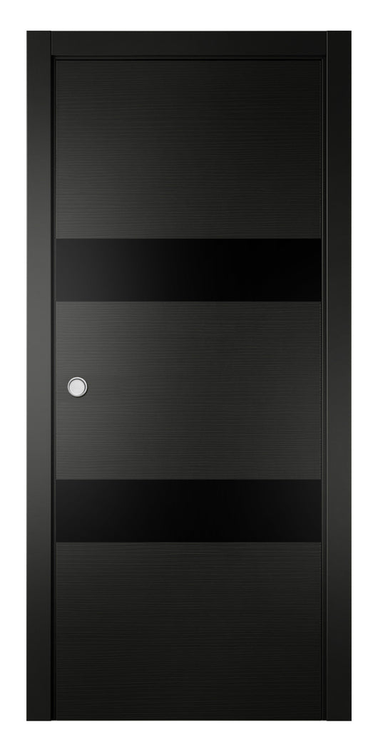 Sarto Avant 4037 Interior Pocket Door Black Taeda Lacobel Glass