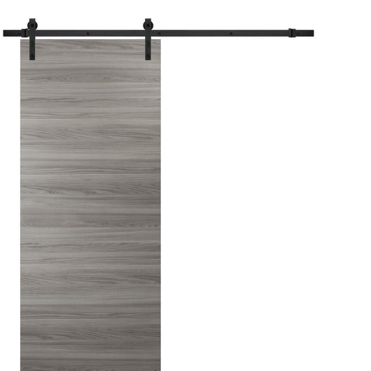 Planum 0010 Sliding Interior Modern Barn Door Ginger Ash with steel Track 6.6 FT