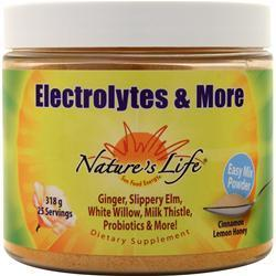 Buy Nature's Life, Electrolytes & More, Cinnamon Lemon Honey 318 grams at Herbal Bless Supplement Store