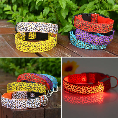 Leopard LED Safety Dog Collar Glow In The Dark