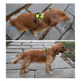 Reflective Dog Harness Vest With Handle For Medium & Large Breeds