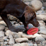 Rubber Rugby Training Ball Toy for Dogs