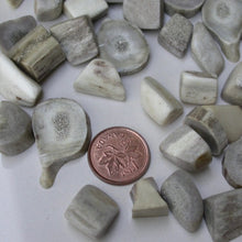 Load image into Gallery viewer, Deer Antler Stones - Song of Stones