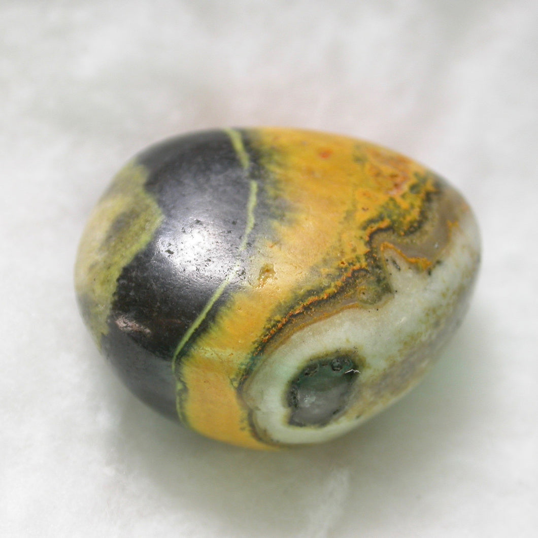 Bumblebee Jasper - Song of Stones