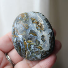 Load image into Gallery viewer, Cayman Island Ocean Jasper - Song of Stones