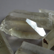 Load image into Gallery viewer, Citrine Lemurian Crystals - Song of Stones