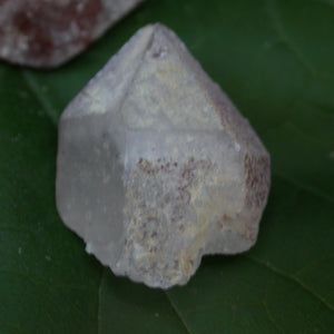 Druid Forest Quartz Crystals - Song of Stones