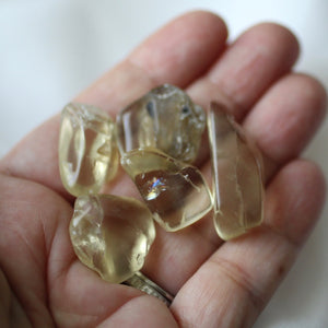 Bytownite Golden Labradorite Tumbled Crystals - Song of Stones
