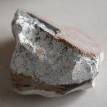 Picture Jasper - Song of Stones