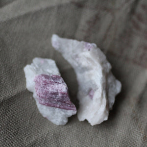 Pink Tourmaline Dolphin Duet - Song of Stones