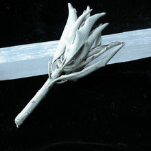 Sage and Selenite - Song of Stones