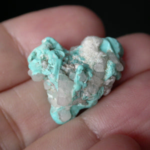 Takanuta Turquoise with Quartz - Song of Stones