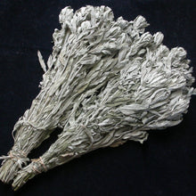 Wild Prairie Sage Smudge Bundles - Song of Stones