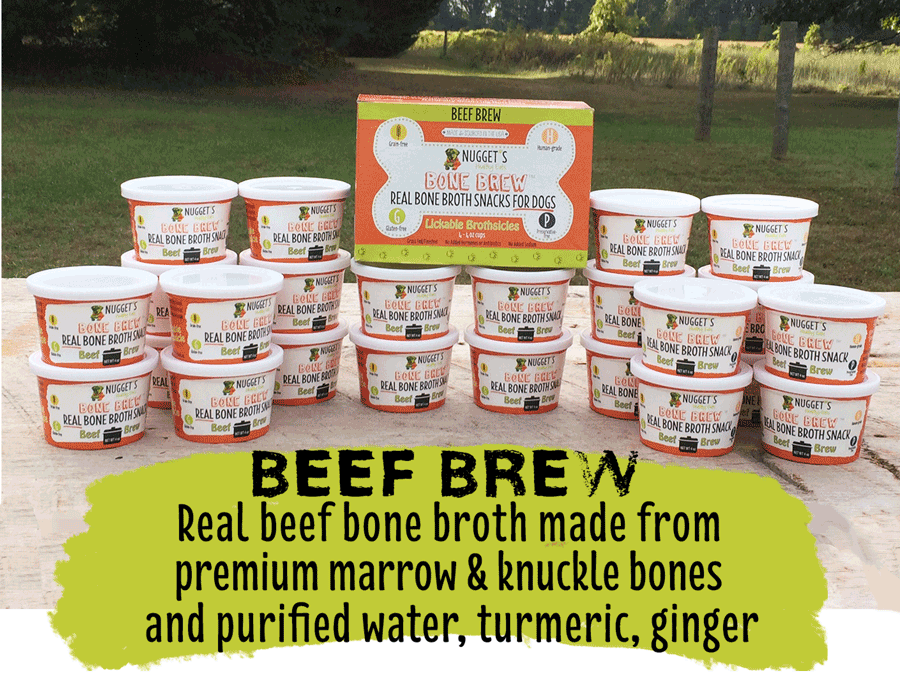 Bone broth for pets' gut health.