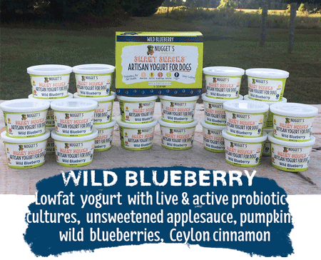 Wild Blueberry Yogurt