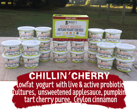 Chillin' Cherry Yogurt