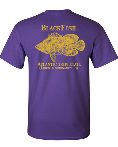 MBO Purple And Gold Blackfish