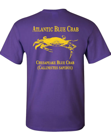 MBO Purple And Gold Blue Crab