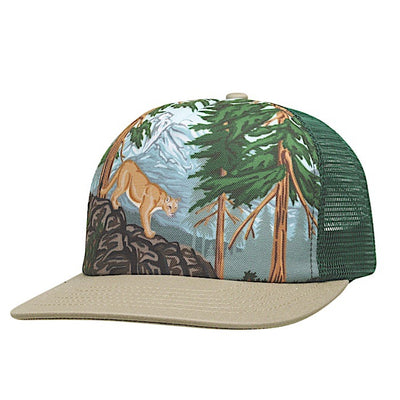 Ambler Paint By Number kids hat - Spruce