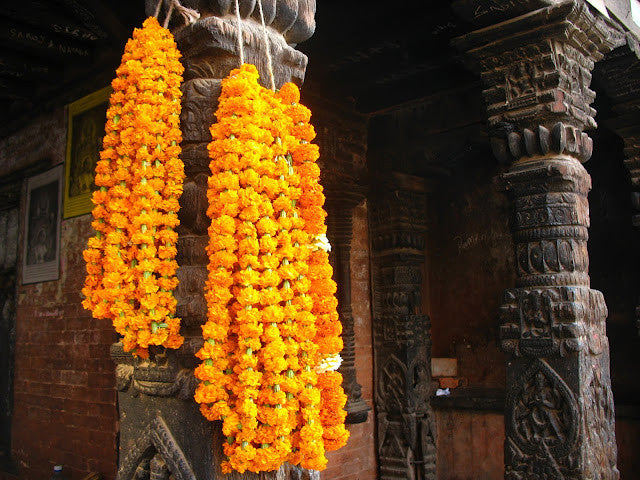 Needles in Nepal