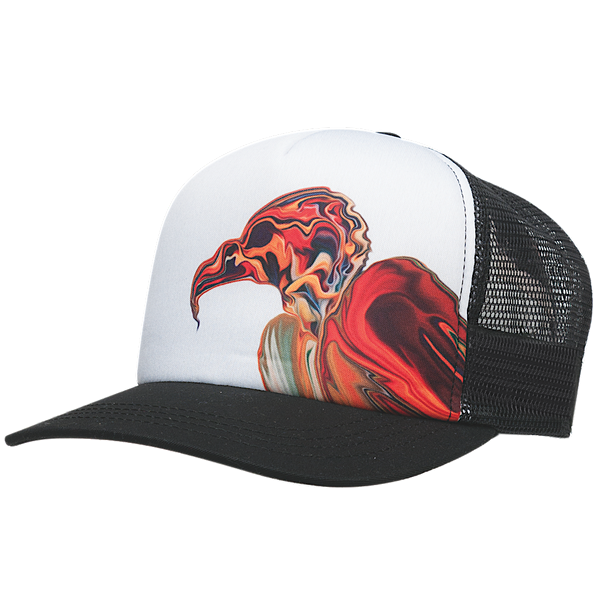 Ambler Bird of Prey hat in black