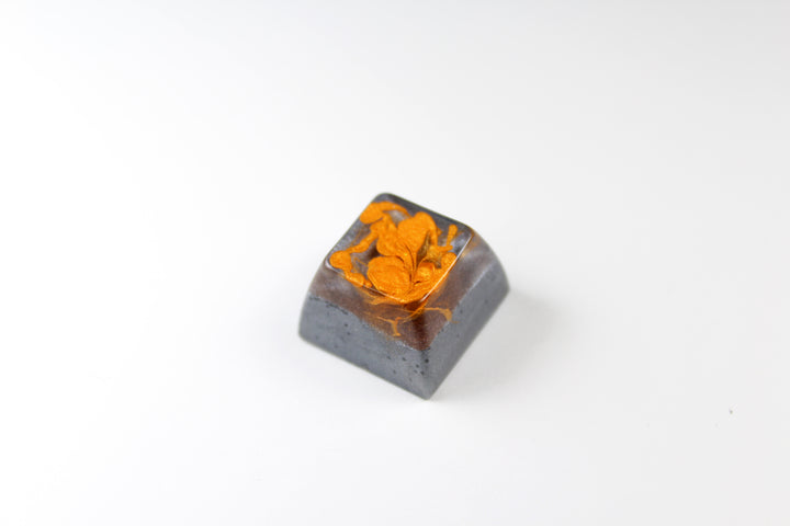 SA Row 3 - Carbon Dallas Sauce -1