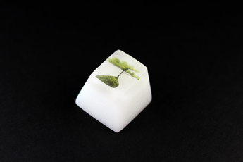 Chaos Caps 1.1 - Zen Lake - PrimeCaps Keycap - Blank and Sculpted Artisan Keycaps for cherry MX mechanical keyboards