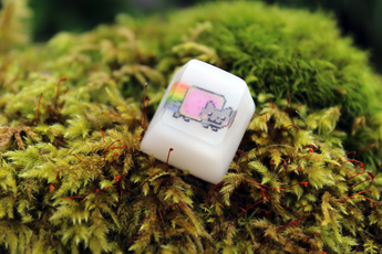 Chaos Caps 1.1 - Nyan Cat - PrimeCaps Keycap - Blank and Sculpted Artisan Keycaps for cherry MX mechanical keyboards
