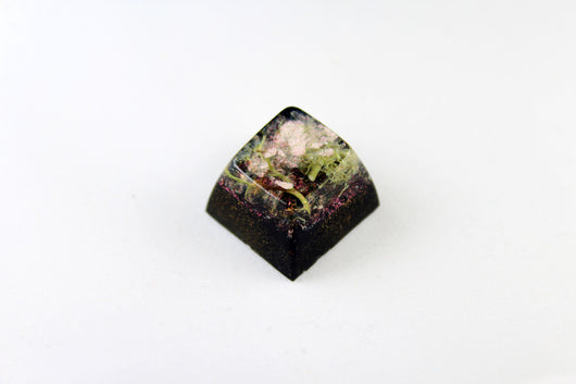 SA Row 2 - Deep Field - Lichen 2