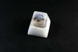 Chaos Caps 1.1 - Awkward Seal - PrimeCaps Keycap - Blank and Sculpted Artisan Keycaps for cherry MX mechanical keyboards