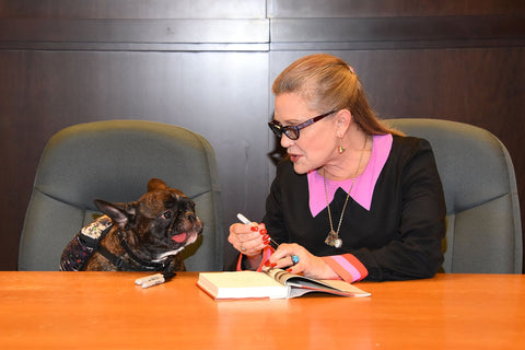 Carrie Fisher and her French Bulldog