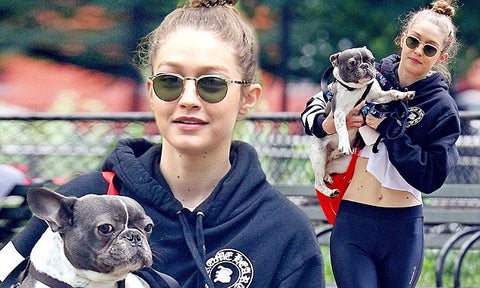 Gigi Hadid and her French Bulldog