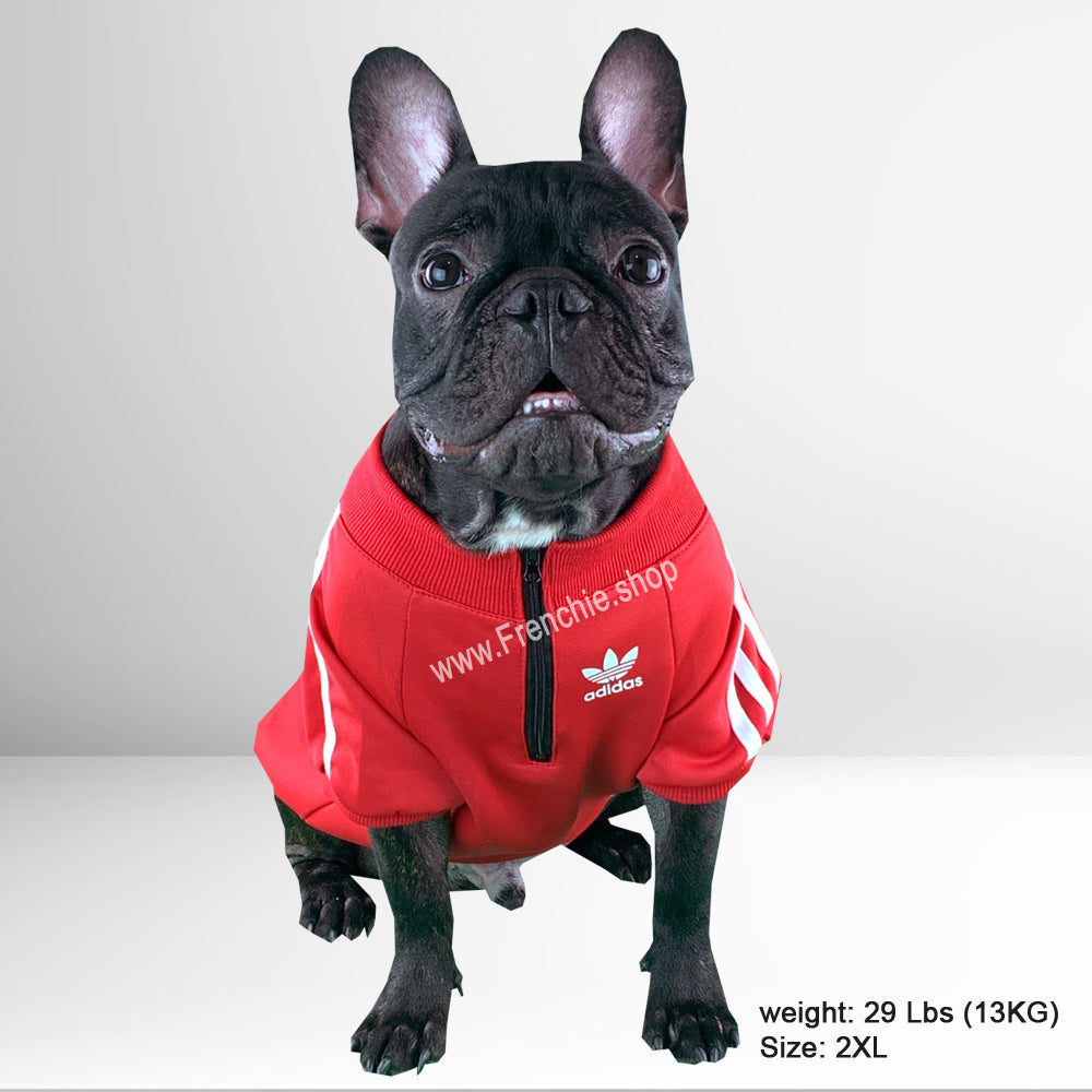 Stylish Adidog sweater for French Bulldog (WS50) - Frenchie Bulldog Shop