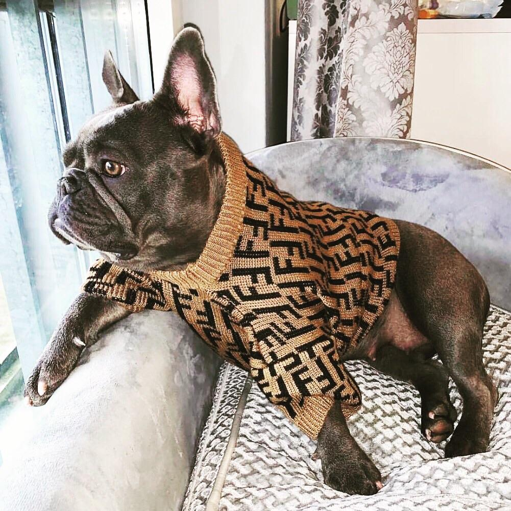 PENDI Sweater - frenchie Shop