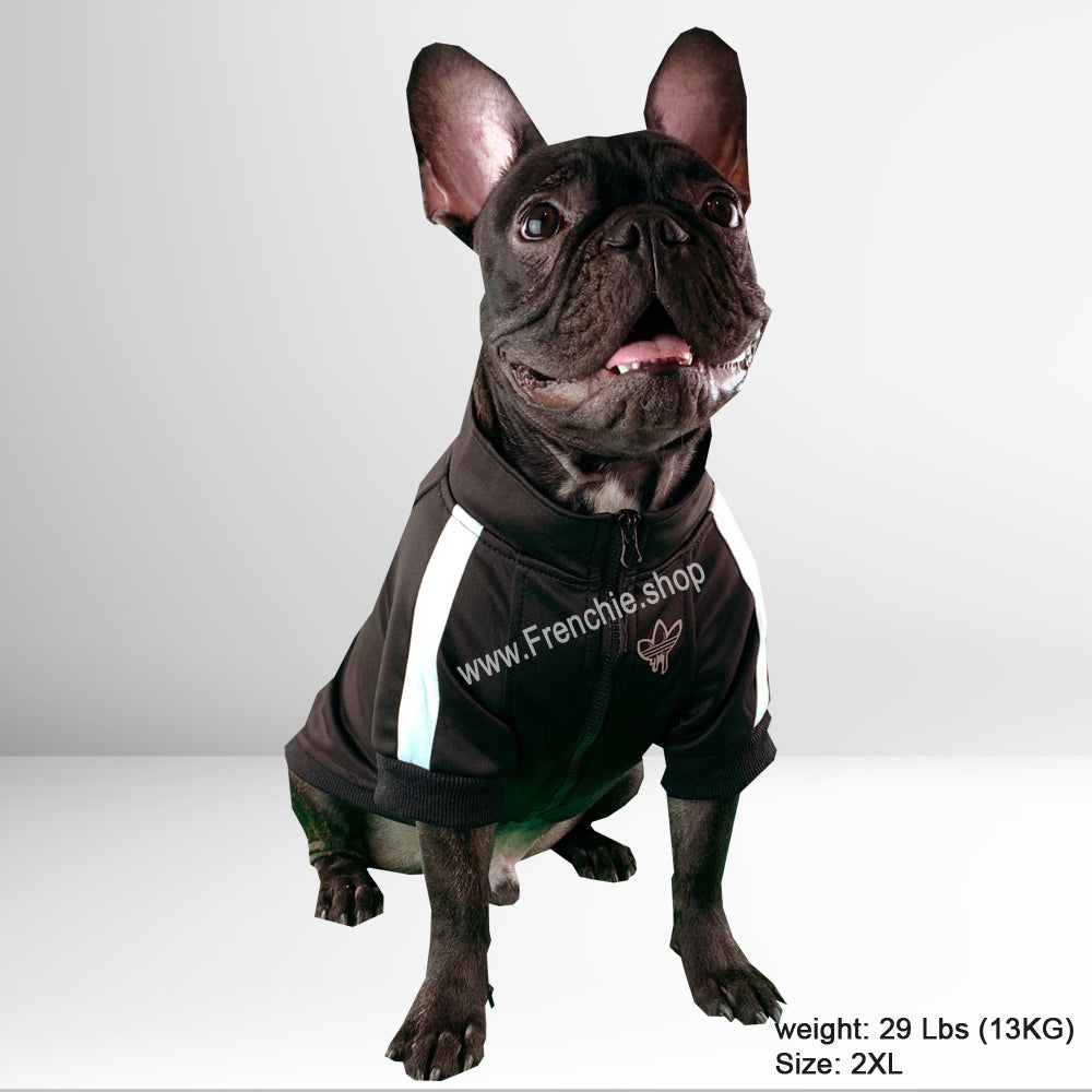 Meelo Sweater for French Bulldog (WS034) - Frenchie Bulldog Shop