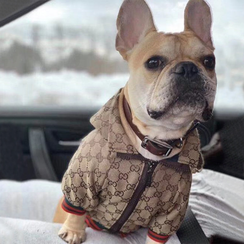Luxury Jacket - frenchie Shop