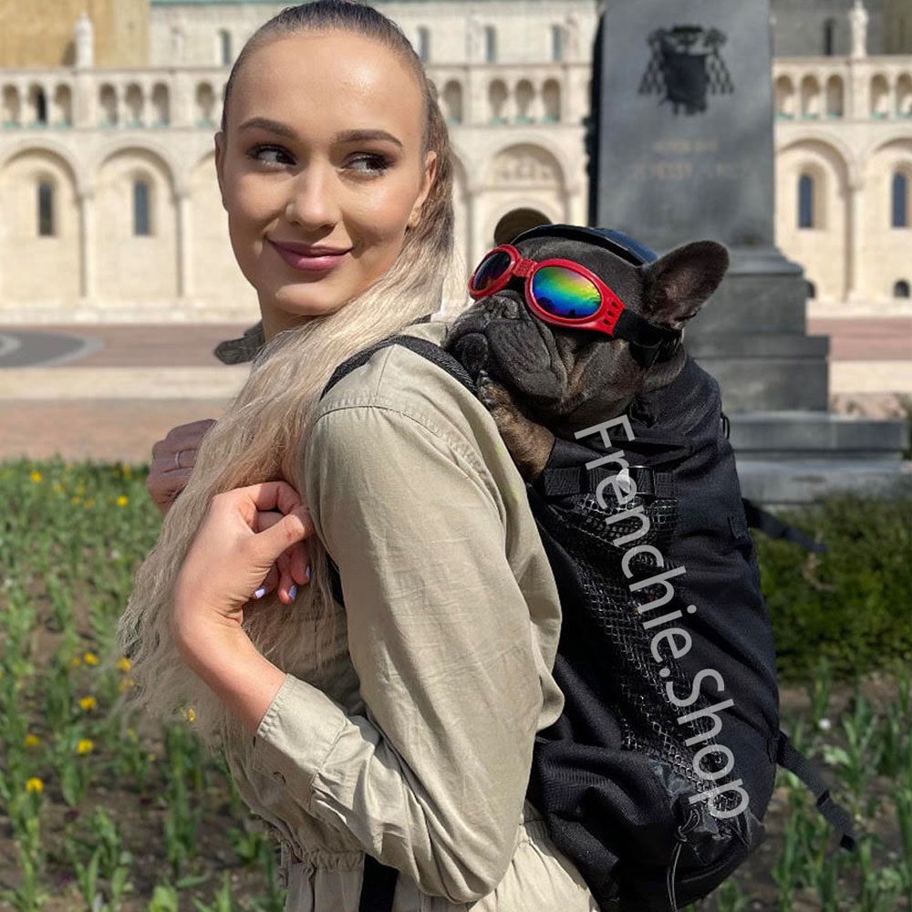 Frenchie Backpack™ [V1] (CS03) - Frenchie Bulldog Shop