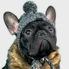 Windproof Woolen Winter Cap for French Bulldog (WS312) - Frenchie Bulldog Shop