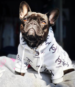 CH Frenchie Hoodie (WS64) - Frenchie Bulldog Shop