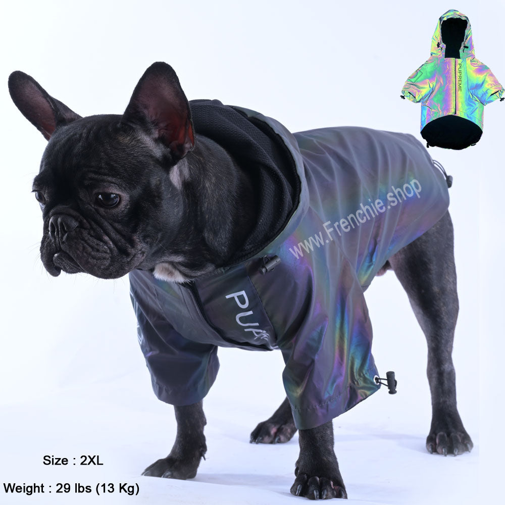 Reflective French Bulldog Jacket (WS39) - Frenchie Bulldog Shop