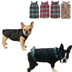 French bulldog  Jacket (WS18) - frenchie Shop