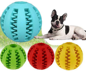 Teeth Cleaning Toy for French Bulldog (WS68) - Frenchie Bulldog Shop