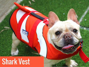 Jacket Swimwear for French bulldogs : Shark life vest