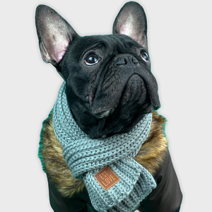 Winter Scarf for French Bulldog - Frenchie Bulldog Shop