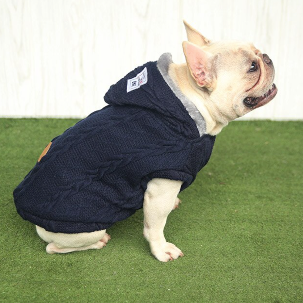 Warm Sweater for French Bulldog (CS10) - Frenchie Bulldog Shop