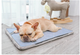 Self Cooling™ pad bed
